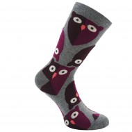 Pilkos kojinės Pelėdos
