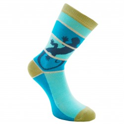 Turkio spalvos kojinės Driežas