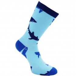 Žydros kojinės Rykliai