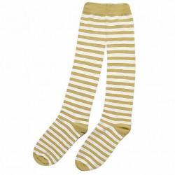 Dryžuotos kojinės iki kelių Šviesiai ruda gelsva