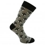 Spalvotos kojinės pilkos Lapės